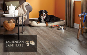 Laurentian Laminate